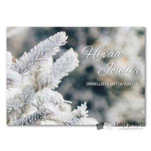 Hyvää joulua Huurteinen oksa