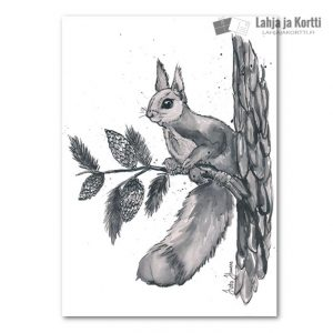 Metsäneläimet Orava