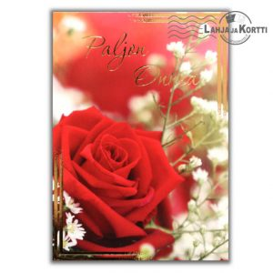 Paljon Onnea punainen ruusu