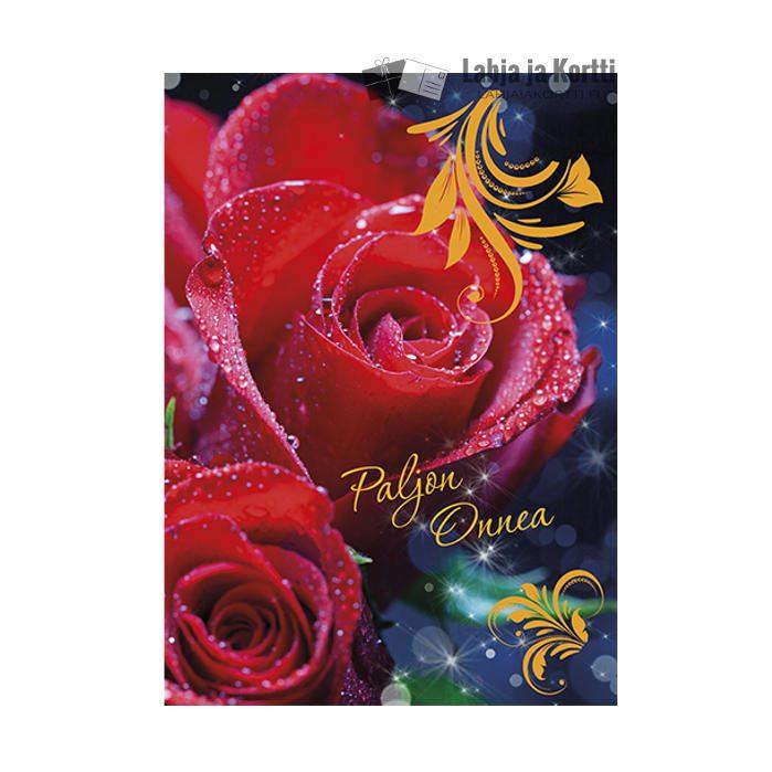 Paljon onnea Punaiset ruusut pisaroilla