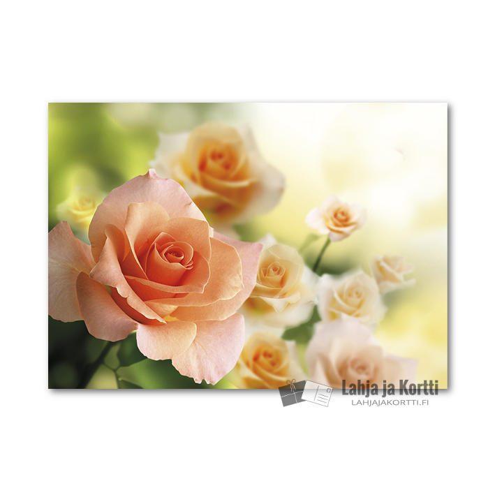 Vaaleanoranssi ruusukimppu